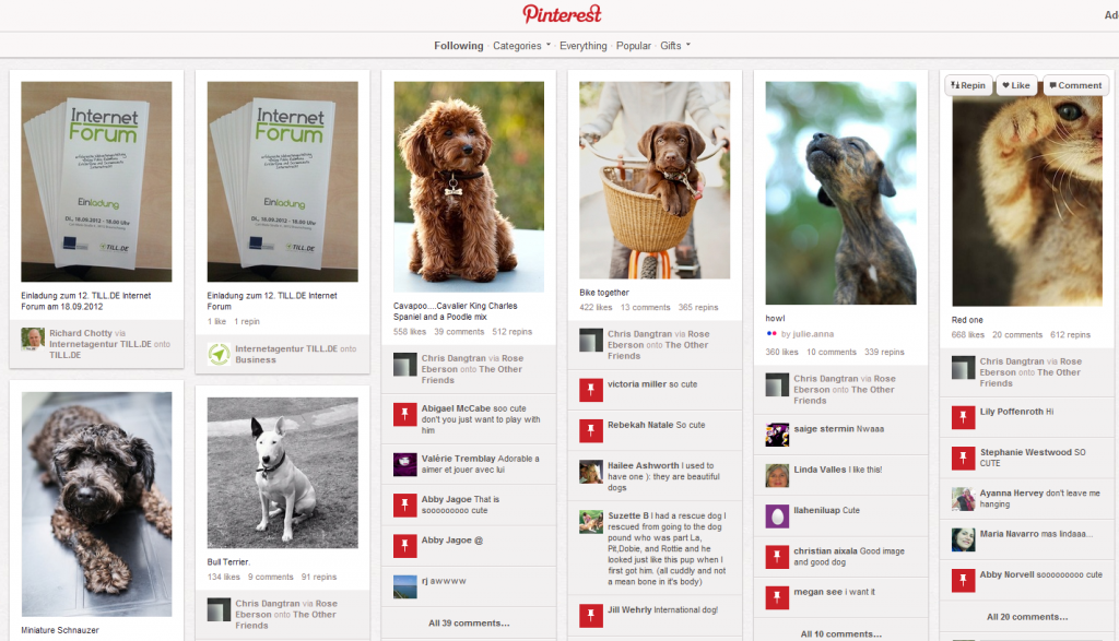 Pinterest Pinnwand